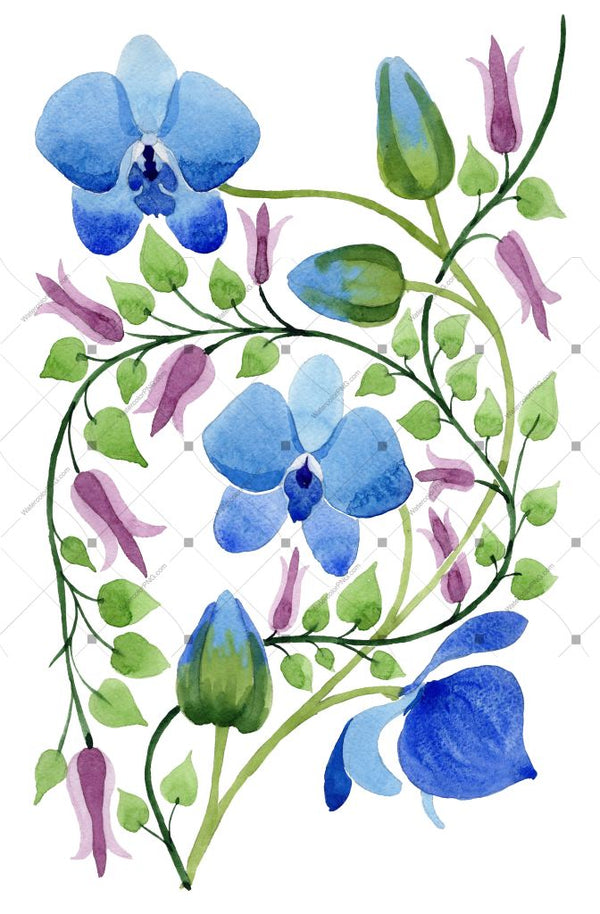 Ornament Of Blue Flowers Png Watercolor Set Flower