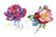 Stunning big red rose PNG watercolor set