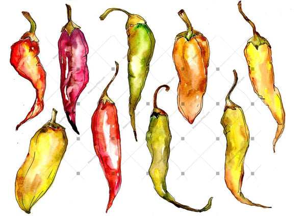Green And Yellow Pepper Vegetables Png Watercolor Set Digital