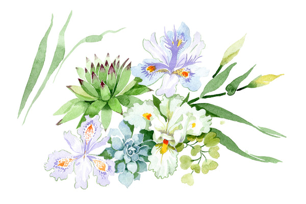 Bouquet with white irises watercolor PNG