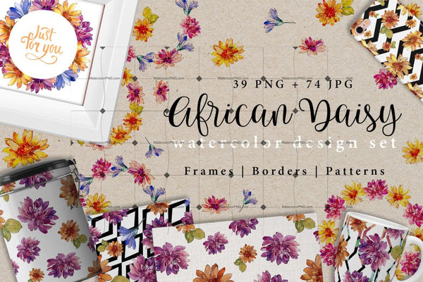 African Daisy Png Watercolor Desing Set Digital