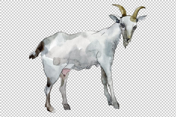 Agriculture: goat Watercolor png Flower