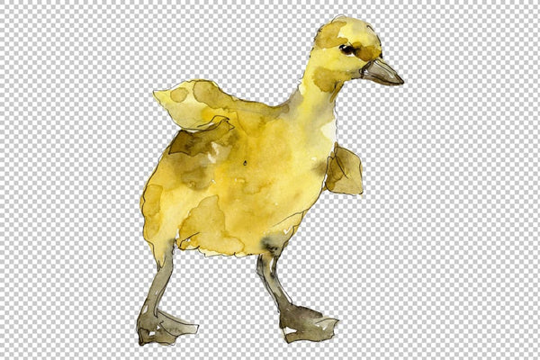 Agriculture: Rabbit ducklings Watercolor png Flower