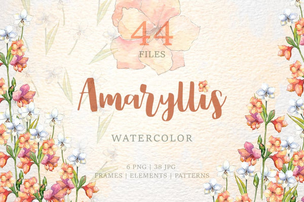 Amaryllis flowers Watercolor png Digital