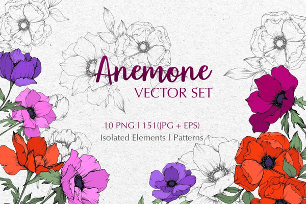ANEMONE VECTOR SET Digital