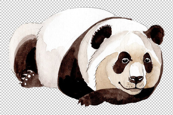 Animal panda watercolor png Flower