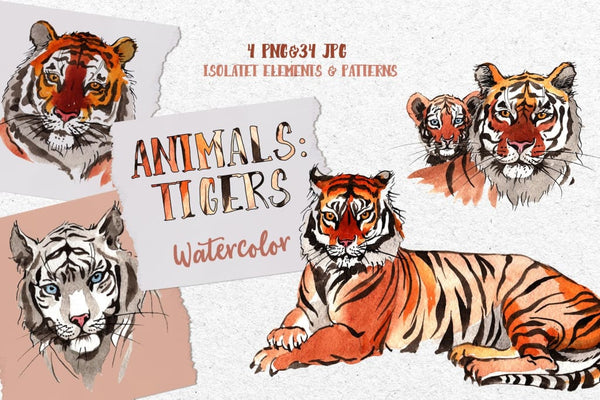 Animals: Tigers Watercolor png Digital