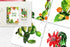 products/aquarelle-green-cactus-png-set-background-botanical-colorful-drawing-digital-watercolorpng_933.jpg