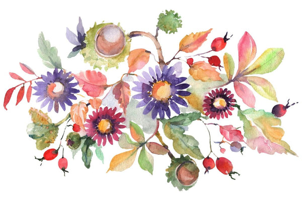 Autumn bouquet blossoming beauty Watercolor png Flower