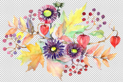 Autumn Bouquet with asters and physalis Watercolor png Flower