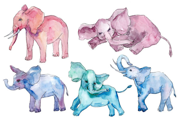 Baby elephant (for baby shower cards) Watercolor png Flower