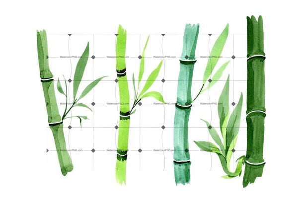 Bamboo Tropic Plant Png Watercolor Set Flower