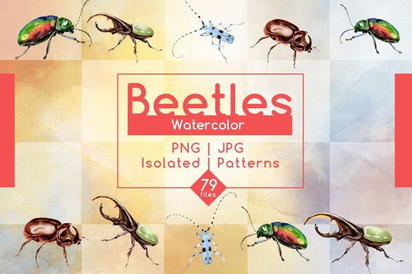 Beetles PNG Watercolor Set Digital