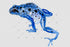 produkteve / blue-frog-png-bojëra uji-vendosur-amphibianpaint-background-plazh-brazil-digital-watercolorpng_745.jpg