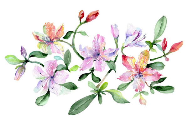 Bouquet Breath of love watercolor png Flower