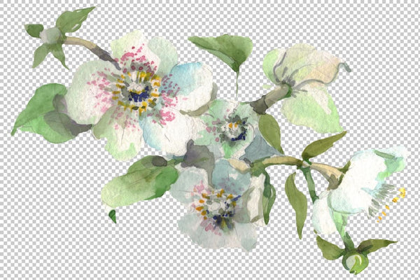 Bouquet Hello summer watercolor png Flower