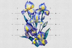 Bouquet Of Blue Irises Png Watercolor Set Flower