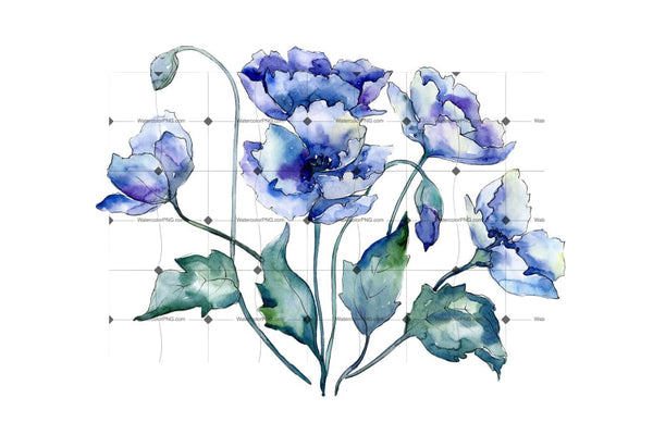 Bouquet Of Blue Poppies Png Watercolor Set Flower
