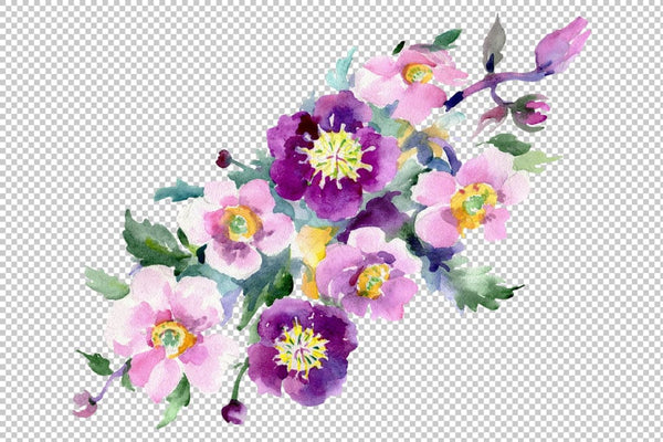 Bouquet of flowers Colombo watercolor PNG Flower