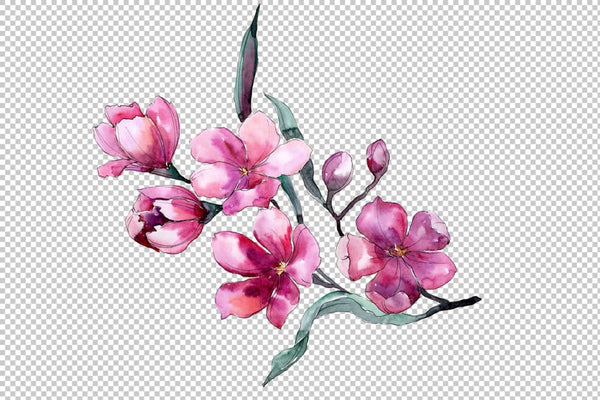 Bouquet of flowers Fiona pink watercolor png Flower