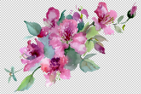 Bouquet of flowers Moulin Rouge watercolor PNG Flower