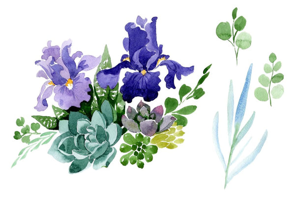 Bouquet of flowers with purple irises watercolor PNG Flower