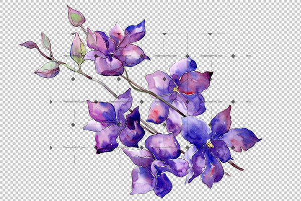 Bouquet Of Purple Flowers Png Watercolor Set Flower