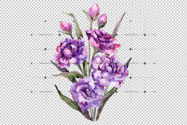 Bouquet Of Purple Peony Png Watercolor Set Flower