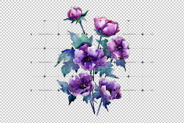 Bouquet Of Purple Poppy Png Watercolor Set Flower