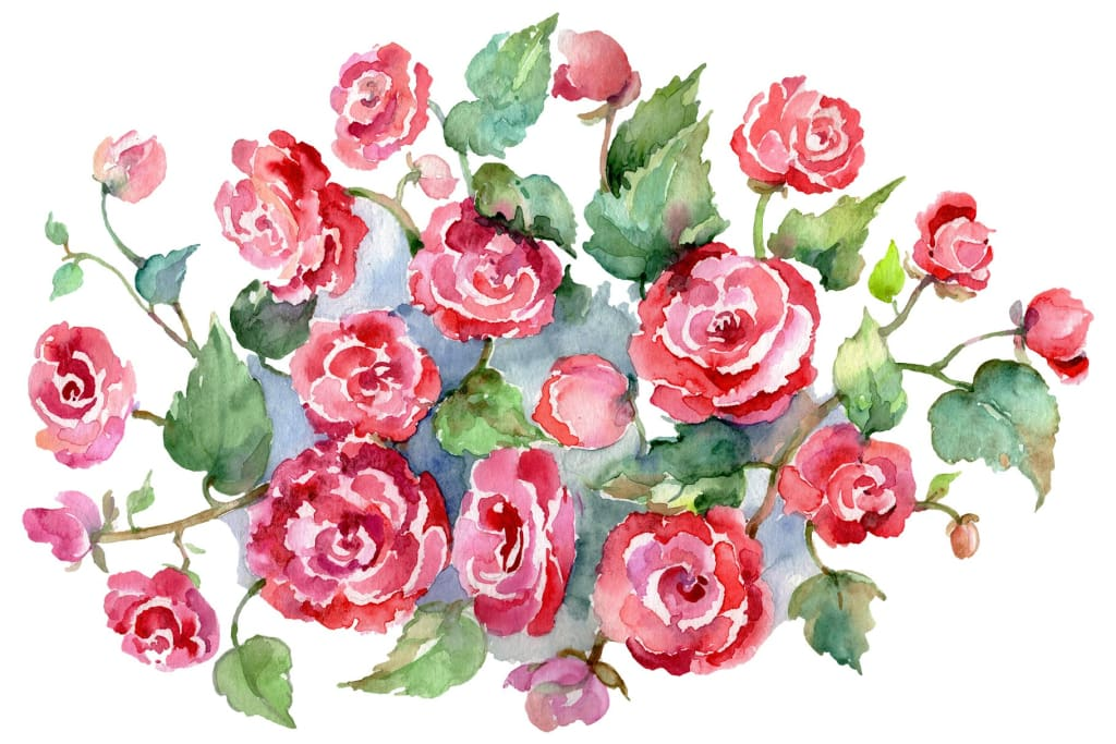 Bouquet of roses pinks Metamorphosis Watercolor png Flower