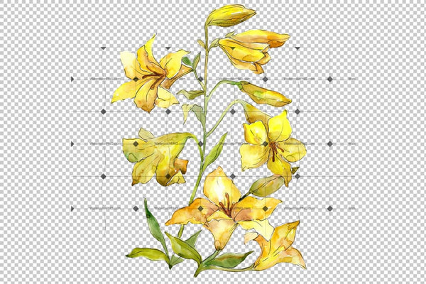 Bouquet Of Yellow Lilies Png Watercolor Flower Set Flower