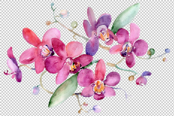 Bouquet pink Jessica watercolor png Flower