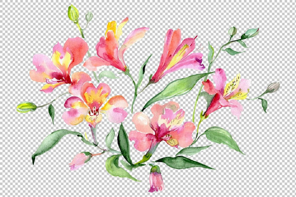 Bouquet red world of good watercolor png Flower