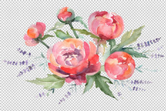 Bouquet na peonies na lavender uhie Watercolor na agba