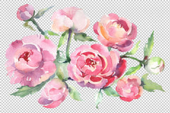 Bouquet with peonies Watercolor png Flower