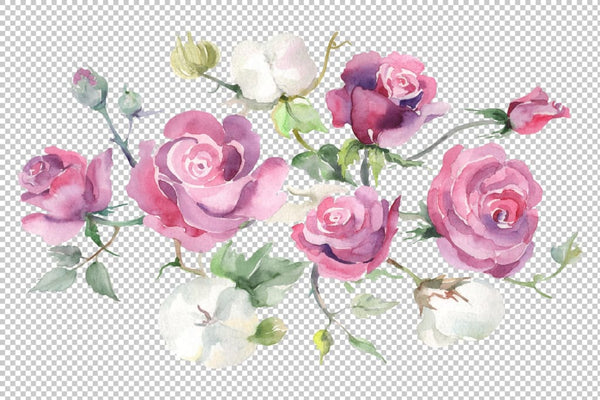 Bouquet with pink roses and cotton watercolor png Digital
