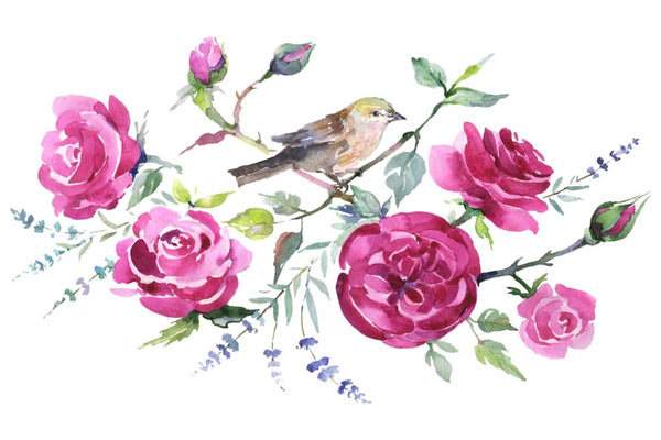 Bouquet with roses and a bird Watercolor png Flower