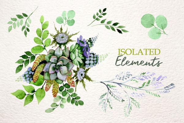 Bouquet with succulents Watercolor png Digital