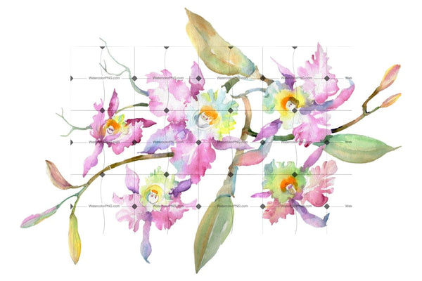 Branch Of Pink Orchids Watercolor Png Flower