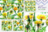 produk / terang-kuning-dandelion-png-watercolor-set-background-botanical-color-delicate-digital-watercolorpng_228.jpg