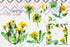 products/bright-yellow-dandelion-png-watercolor-set-background-botanical-colorful-delicate-digital-watercolorpng_470.jpg