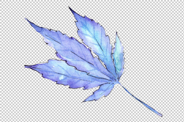 Cannabis plant watercolor png Flower