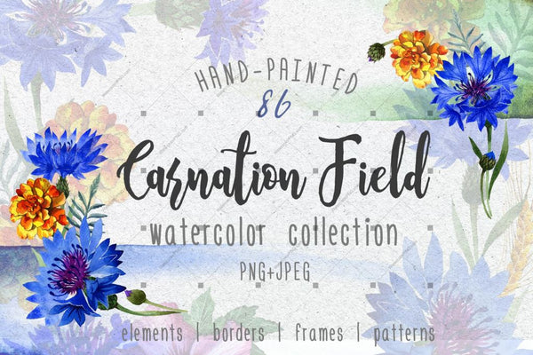 Carnation Field Png Watercolor Set Digital