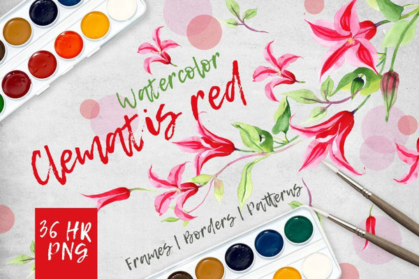 Clematis Red Png Watercolor Set Bunga Digital