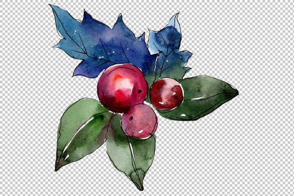 Collection of happiness Christmas watercolor png Flower