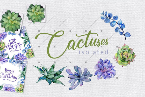 Colorful Cactuses Png Watercolor Set Digital