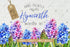 Colorful Hyacinth Png Watercolor Set Budle
