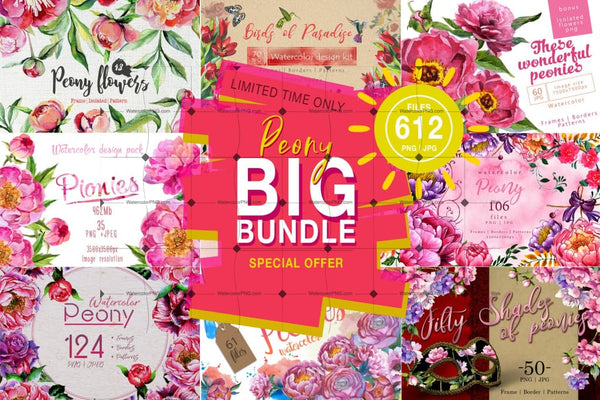Colorful Passion Watercolor Bundle Bundle