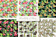 100 Patterns Of Tropics Jpg Acquerello Set Digitale