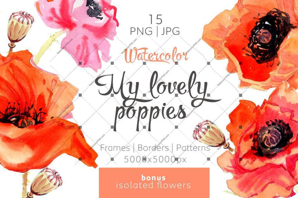My Lovely Poppies Png Watercolor Set Digital